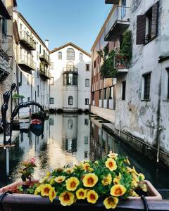 Burano, vaporetto, caldo come se stessi in terronia, 18km a piedi ma, grazie a @silvia_rizzo_ ho visitato anche la bella Treviso.} *Scattata con #GalaxyS7Edge #FramesOfItaly @samsungitalia #igersveneto #igerstreviso #veneto #venetissimo #igersitalia #treviso Ph. Marika Marangella